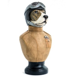"""Maverick"" Dog Bust"